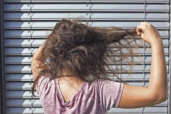 Rezultat iskanja slik za skuštrani lasje
