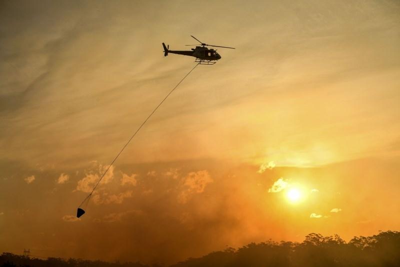 Požar v Sydneyju uničil več kot 1000 hektarov površin