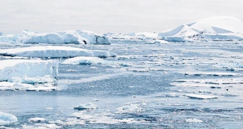 Turisti ogrožajo naravo na Antarktiki