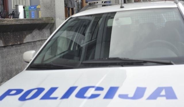 Policija prodaja rabljena vozila in službene pse