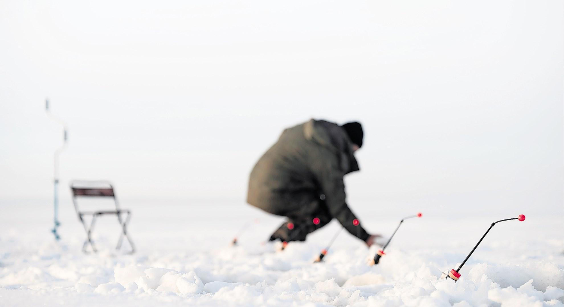 Številne bakterije že dolgo spijo pod ledom