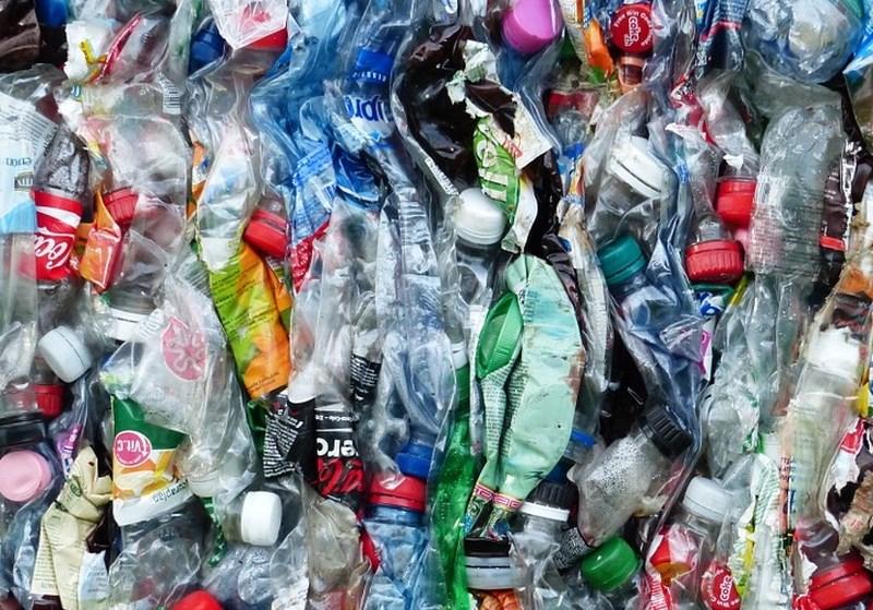 Po raziskavi WWF menda tedensko pojemo eno plastično kartico