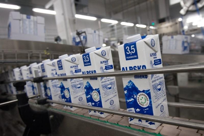 Ljubljanske mlekarne povečujejo odkup mleka, tudi ekološkega