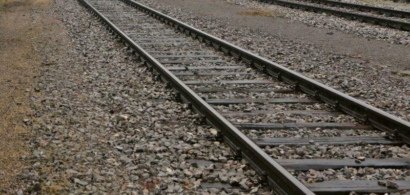 Pri Hrastovljah iztiril tovorni vlak