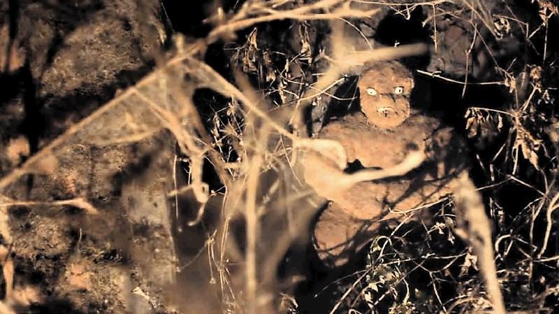 15. Grossmannov festival fantastičnega filma in vina: Med zombiji, klišeji in vinom