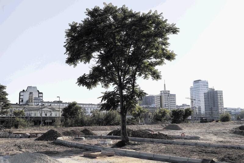 Na zemljiščih Emonike najbolje uspevajo parkirišča