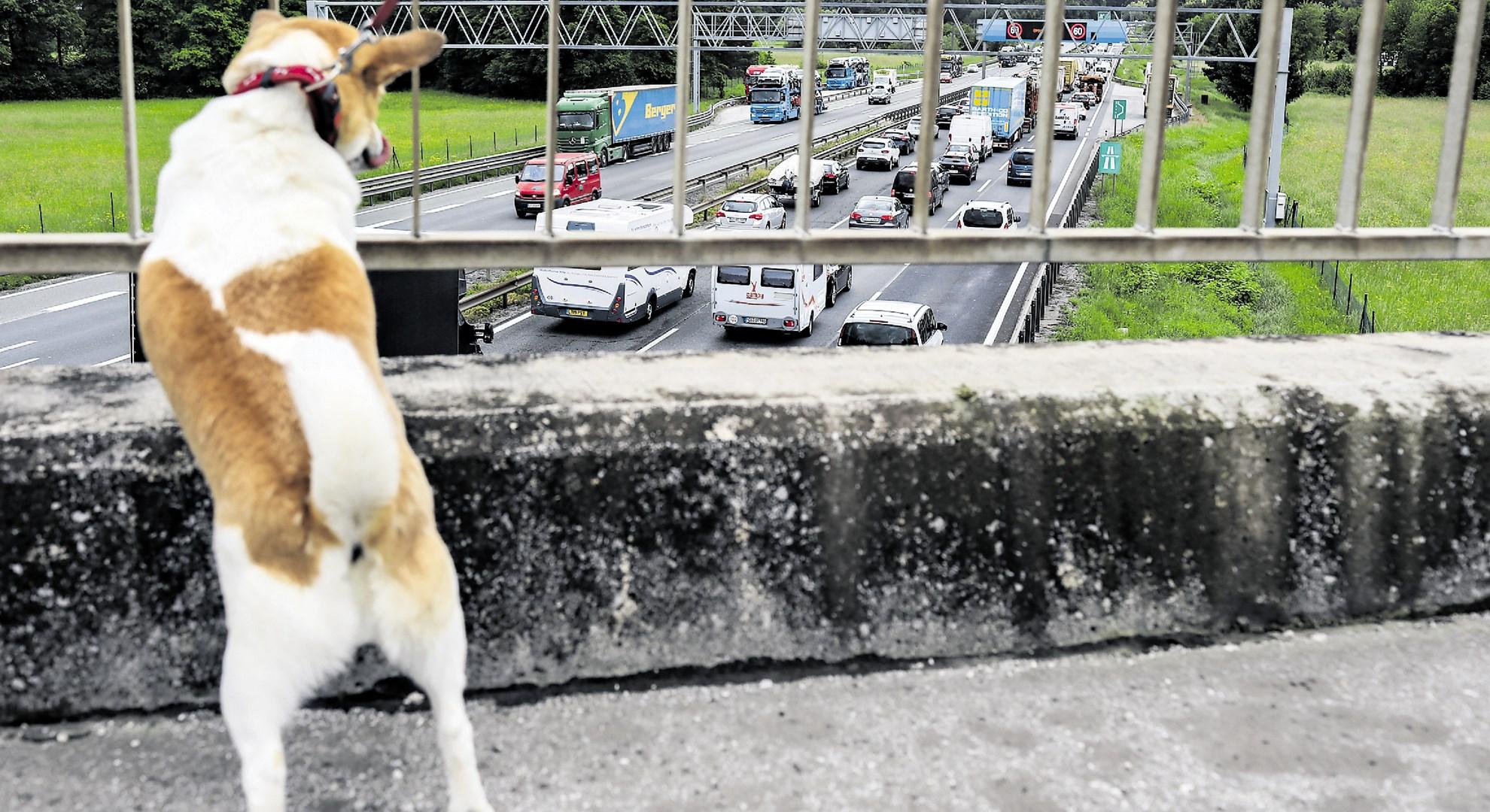 Zaradi prometne nesreče zaprta polovica avtoceste proti morju