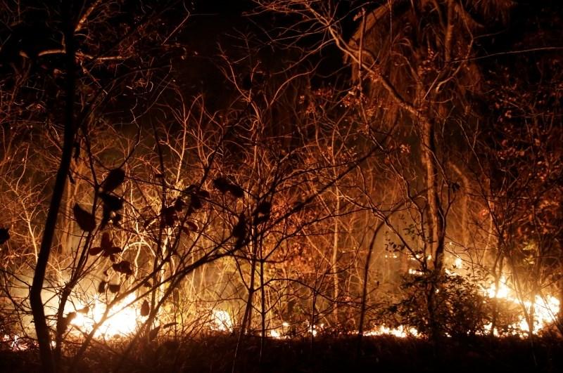 Gasilci se v bližini Aten borijo z obsežnim požarom