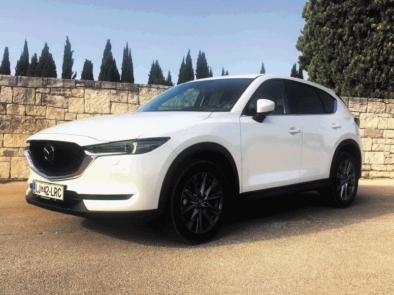 Ford kuga in mazda CX-5: Dilema med vodo, pivom in vinom
