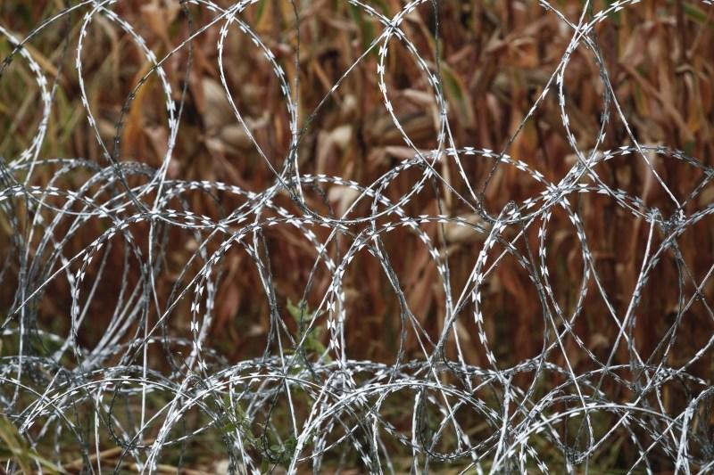 Na poljsko-beloruski meji našli trupla več migrantov