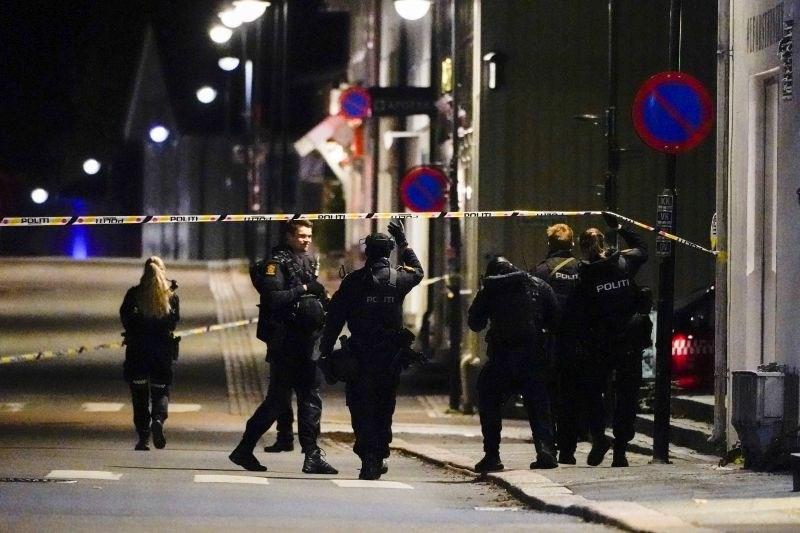 Napadalec z lokom na Norveškem ubil več ljudi